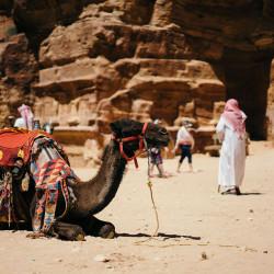Ägypten – diese Impfungen benötigst du vor dem Urlaub im Land der Pharaonen