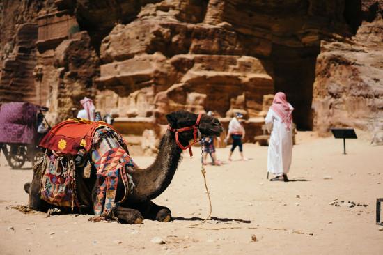 impfungen ägypten